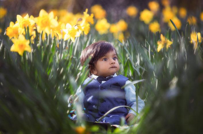 daffodil photoshoot at manorheath park